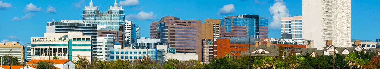 Image: Texas Medical Center